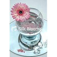 Specchio Vaso Centrotavola–Spirale Rosa Gerbera (Bloom Specchio)
