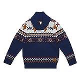 ESPRIT KIDS Jungen Pullover RK18134, Blau (Deep Indigo 491), 116