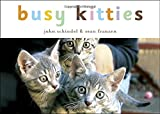 Busy Kitties (Busy Books) (Busy Animals)