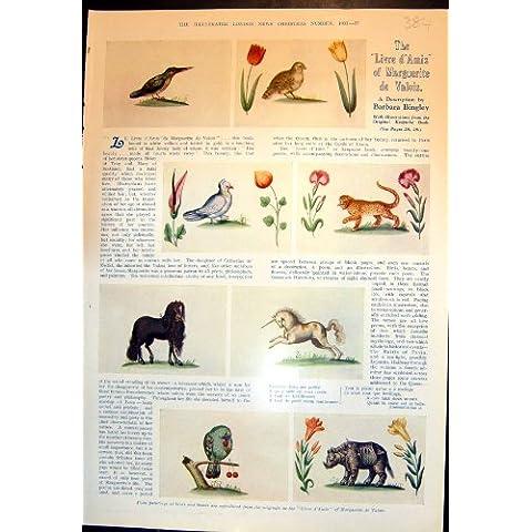 Corazón 1933 de Rose de las Bestias de D'Amis Marguerite De Valois Birds del Livre [Cocina y Hogar]