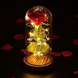 LEDMOMO Rosa de seda roja y luz LED con pétalos caídos en una cúpula de cristal sobre una base de madera Regalo para el día de San Valentín Boda de cumpleaños de aniversario (rosa única)