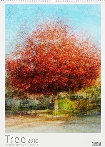 Pep Ventosa: Tree 2019 - In the round - Bäume-Kalender - Foto-Kunst - Poster-Format