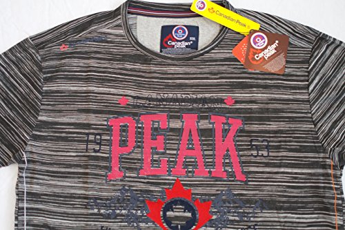 Canadian Peak Herren T-Shirt Funktionsshirt Jalileo by Geographical Norway D-Grey