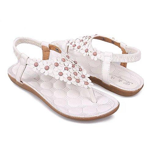 TOOGOO(R) Nuovi sandali di Flip-flop aperti pattino delle donne dei pattini delle donne dei pattini fiore della Boemia bordato dolce molatura dolce per le donne 668 Beige US5=EUR35=22.5CM 668 bianco