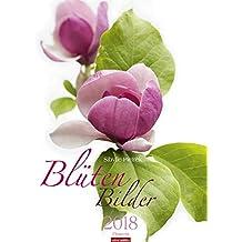 Blütenbilder - Kalender 2018