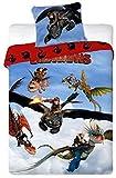 Unbekannt Faro Dragons Kinderbettwäsche Bettwäsche 160x200cm Drachenzähmen leicht gemacht, Baumwolle, Mehrfarben, 200 x 160 cm