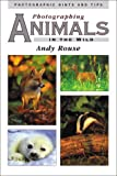 Photographing Animals in the Wild (Photographic hints & tips)