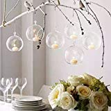 Warmiehomy 6 X Hanging Clear Glass Vaso da Fiori Flower Bauble Tea Light Candle Holder Giardino Indoor Outdoor 10cm