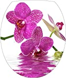 Sticker Autocollant Abattant WC Fleur Orchidée Eau 35x42cm - SAWC0503