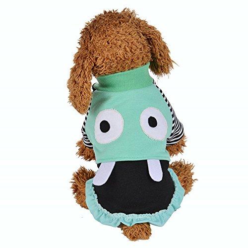Haustier Kleid,Hund Kleid Spitze Weste Rock für Kleine Hunde Katze Mädchen Bekleidung,Hund/Katze-Haustier-Kleid für Kleine Hunde,Welpen,Schnauzer,Teddy,Pudel,Chihuahua (Grün, XXL)