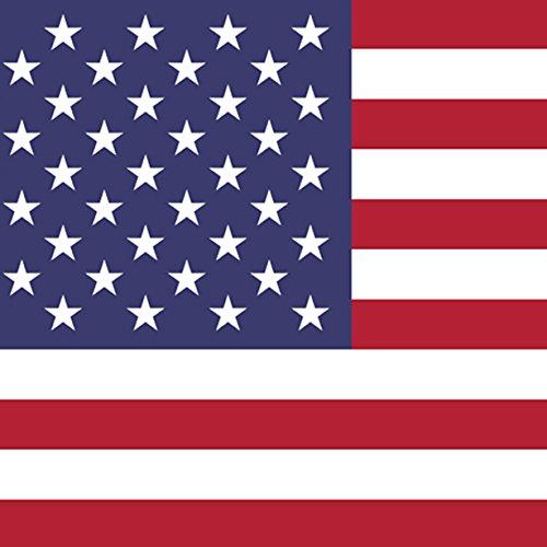 Magnet Frigo avec drapeau national américain - 5 x 5 cm - Aimant pour les amis des États-Unis