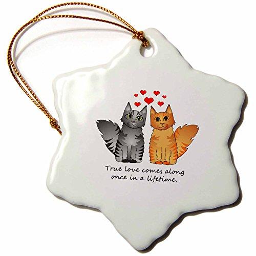 3dRose Orn 35529_ 1Cute Maine Coon Katzen True Love kommt Once in a lifetime Silber und Rot gestromt Schneeflocke Porzellan Ornament, 3Zoll
