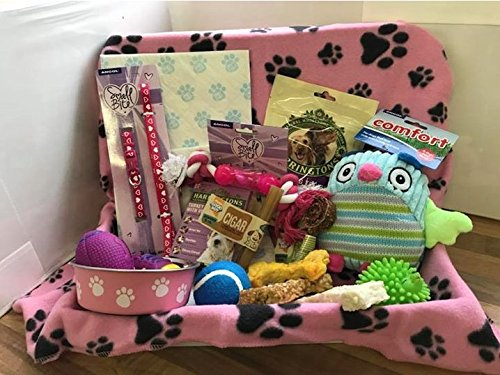 Pink Small Dog Hamper with Hearts Collar & Lead