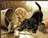 Dorara DIY Ölgemälde für Erwachsene Kinder Farbe nach Zahl Kit Digital Ölgemälde Zwei Hunde Spielen Spaß 16x20 Zoll