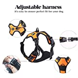 Rabbitgoo Adjustable Refletive Dog Harness Outdoor Pet Vest with Handle Easy Control for Small Dogs & Durable Material Orange