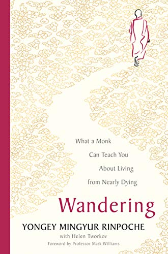 Wandering: What a Buddhist Monk Can Teach You About Living from Nearly Dying (English Edition)