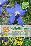 55 Heilpflanzen selbst gezogen: Anbau, Pflege, Verwendung, Bio-Garten PRAXIS -