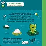 Wie kleine Tiere gro? werden: Der kleine Frosch (Edition Piepmatz)