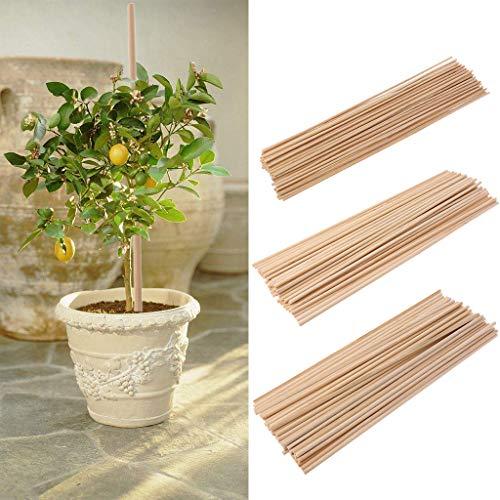 Guoyy - 50 bastoncini di bambù per piante in legno, legno, comme le montrent les images, 3mm