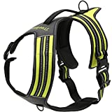 Da Jia Inc No-pull Hundegeschirr-3M Reflektierende Outdoor Adventure Pet Weste mit Griff Nylon Heavy Duty Sicherheitsgriff für Hund Training oder Walking Haustier Geschirr(Grün,L27.5-37.5in)