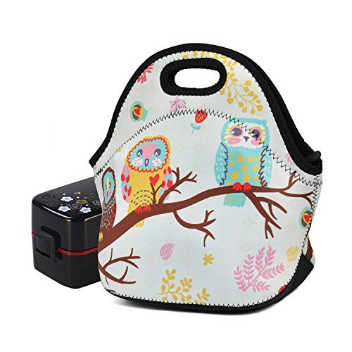Isolierte Lunch-tasche für Männer Frauen Kinder Neopren Lunch Tasche Herren Wasserdichte Büro Schule Fitness Lagerbehälter Taschen Eule