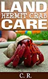 Land Hermit Crab Care