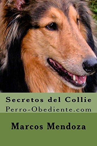 Secretos del Collie: Perro-Obediente.com