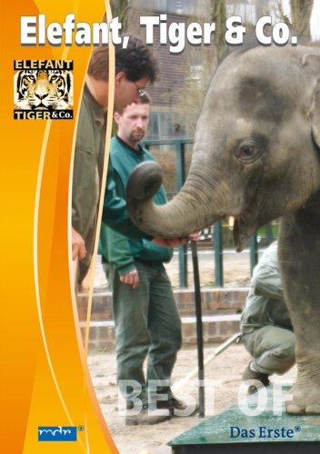 Elefant Tiger Co Sendetermine 08072016 11102016