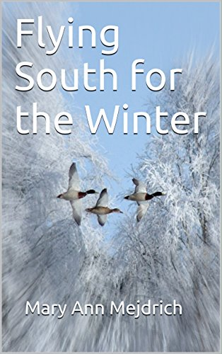 flying-south-for-the-winter-english-edition