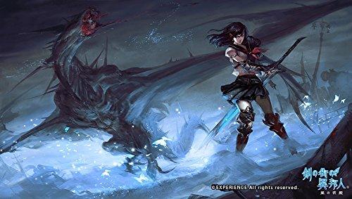 Stranger of Sword City - Bild 7