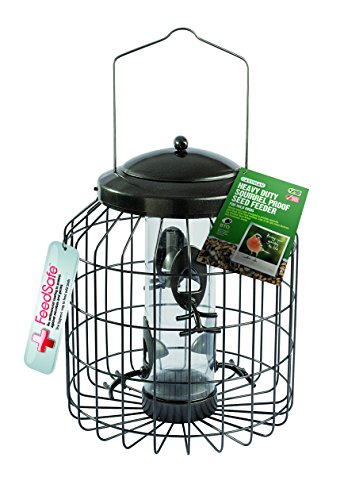 Gardman Heavy Duty Squirrel Proof Seed Bird Feeder Test