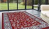 Tapis classique pas cher design Oriental/persan tapis d'occasion  Livré partout en France