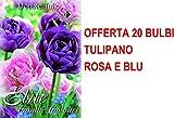 OFFERTA 20 BULBI AUTUNNALI TULIPANO DOUBLE MIX BLUE PINK BULBS BULBES