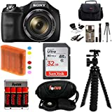 Sony DSC-H300/B DSCH300B H300 20.1MP with 35x Optical Zoom and 3-inch LCD + Sony 32GB SDHC + Focus AA Batteries w/ Charger + Focus Camera Case with Accessory Kit