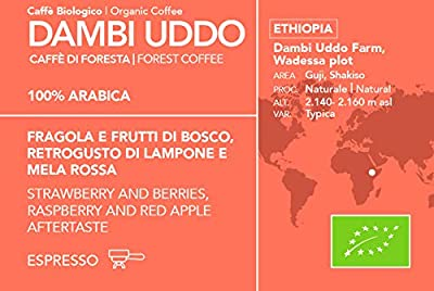 Organic Ethiopian 100% Arabica ESE Coffee Pods | Raspberry and Red Apple Aftertaste | 50 Pods