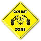 Funny Deko Schilder Gym Rat Zone Schild Fitness Trainer Body Builder Geschenk Metall Aluminium Zeichen für Garagen, Wohnzimmer