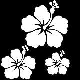 Stickers autocollants 3 fleur d'hibiscus couleur aux choix,voiture,frigo,mur,porte etc... (Blanc)