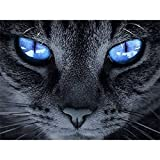DIY 5D Diamond Painting, Crystal Rhinestone Embroidery Pictures Arts Craft for Home Wall Decor Blue-eyed Cat 9.4 x 12.6