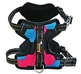 WEATLY Hundegeschirr Kein Pull Dog Harness Front Range Hundegeschirr Für Outdoor-Walking (Color : Red, Size : M)