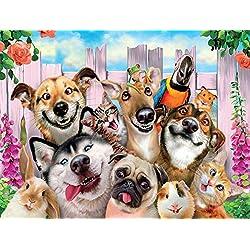 Kit completo de pintura de diamantes 5D perro, gato y loro con diamond painting bordado cuadros de punto de cruz suministros de arte manualidades lienzo para decoración del hogar, 40 x 30 cm