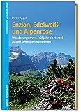 Enzian, Edelweiß und Alpenrose - Wanderungen von Frühjahr bis Herbst zu den schönsten Almwiesen