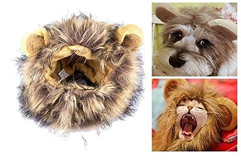 itplus mignon chaton/Kitty/Pet Cosplay Costume Lion Mane perruque Chapeau pour chat ou petit chien Puppy Dress Up avec oreilles Halloween Party