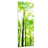 Kunstdruck - Grüner Wald - Bild auf Leinwand - 40x120 cm einteilig - Leinwandbilder - Landschaften - Baumkronen im Sonnenschein