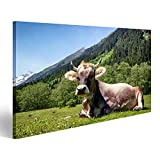 Bild Bilder auf Leinwand Kuh in den europäischen Alpen