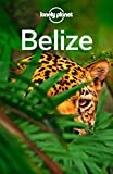 #3: Lonely Planet Belize (Travel Guide)