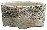 Keramik Jardiniere oval grau braun 2 Stück 24cm x 11cm x 12cm Pflanzschale Pflanzkasten Blumenkasten Dekoschale