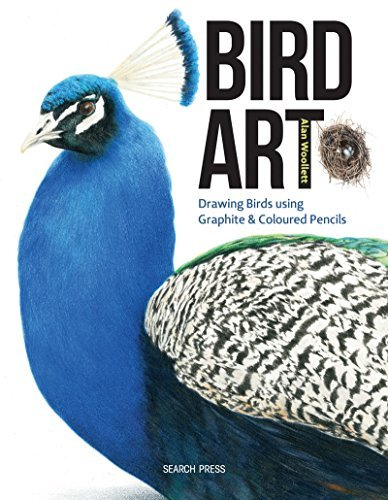 Bird Art (English Edition) -