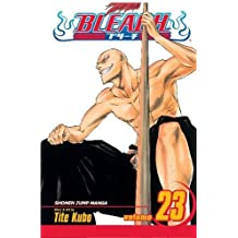 Bleach Volume 23