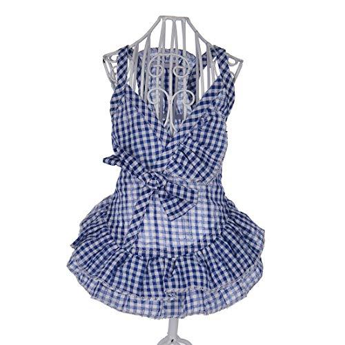 PZSSXDZW Pet Kleidung Frühling und Sommer Klein frisch Rock Hundebekleidung Pet Kleidung Heimtierbedarf Blue X-Large