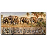 Xpression Décor Key Holder Rack with Photo of Elephant 7006